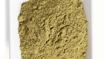 White Dragon Kratom: A Powerful and Unique Blend Among the Strains