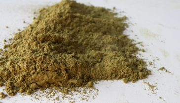 How Long Does Kratom Stay in Your System?